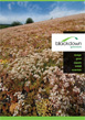 Blackdown Green Roofs Overview