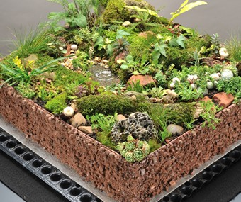 Blackdown Biodiverse Green Roof Alumasc Roofing Systems