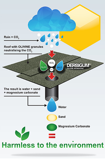 Derbigum Olivine chemical reaction